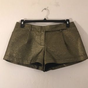 NWOT Max Studio Gold Metallic Shorts